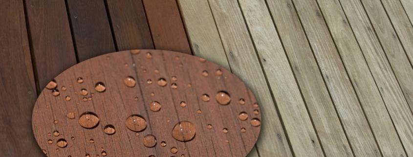 Sparko wood Sealer